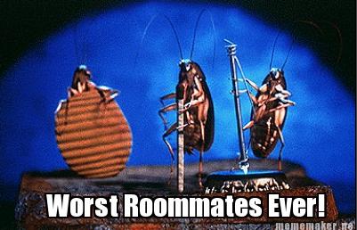 worst roommate horror stories